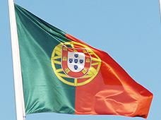 Bandeiras oficiais