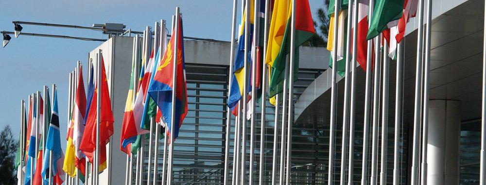 Bandeiras para política