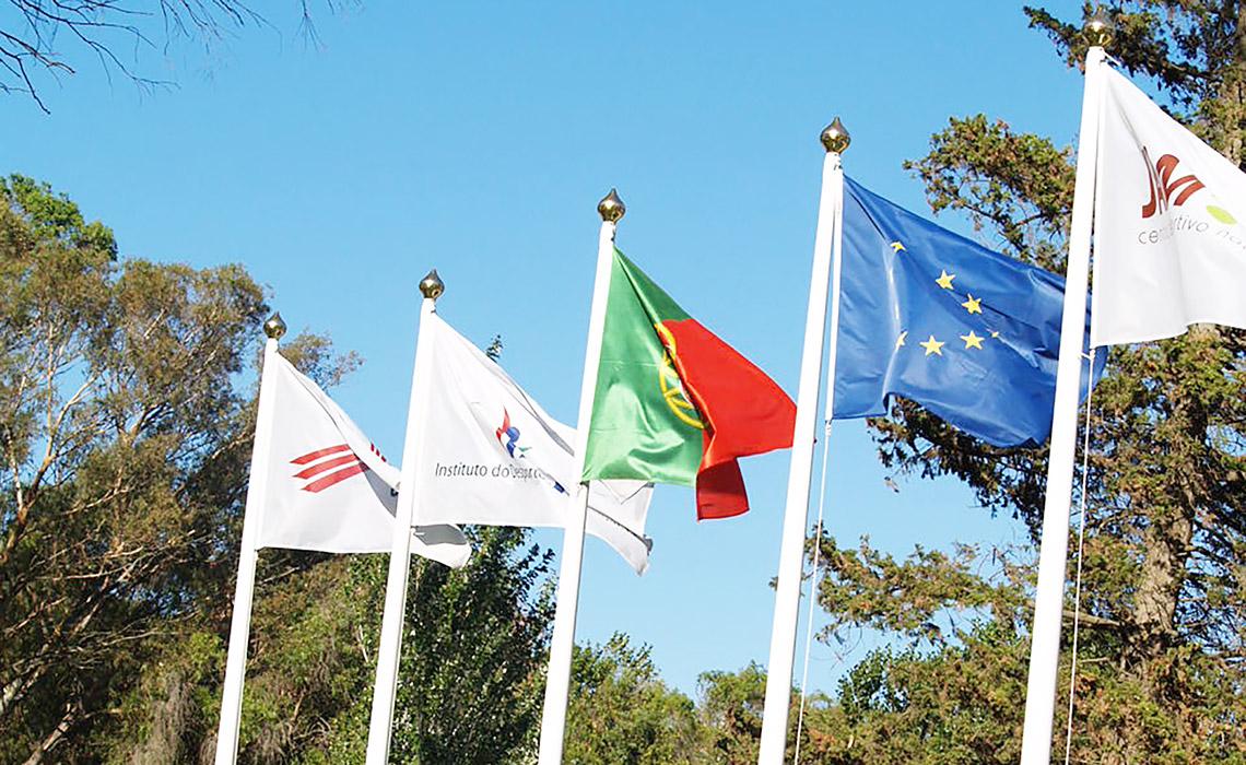 Regras de utilização da bandeira nacional Portuguesa